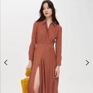 Topshop polka dot dress in petite